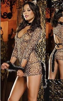On the Prowl Leopard...