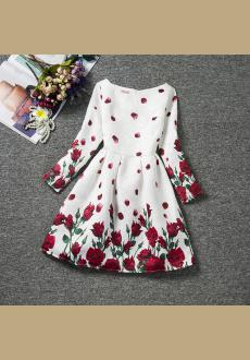 Autumn the new girl rose princess bitter fleabane skirt wholesale printing long sleeved dress girl